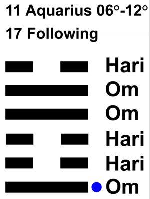IC-chant 11AQ-02-Hx17 Following-L1